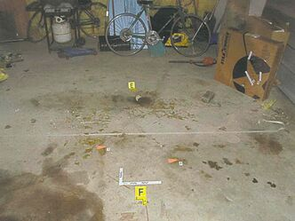 Drop of blood containing Davis�s DNA profile found in the garage on Prince Rupert.
