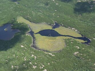 An aerial photo of the Experimental Lakes Area.