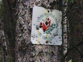 A shot-up Trans-Canada Trail sign.