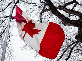 Canada's distinctive maple leaf flag entered its 50th year beginning Feb. 15.