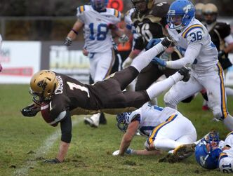 Manitoba's Anthony Coombs takes a tumble on his way to the end zone during the fourth quarter of the game Saturday afternoon. The Bisons won 37-31.