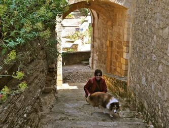 Chula, a 30-pound Shetland sheepdog and veteran traveler, explores Provence with her owner, Sheron Long in Maubec, France. Travel for humans during holidays is tough enough: Long lines, crowds everywhere, extra bags full of presents. Throw a pet in the mix, and it's a recipe for disaster. Long is the author of