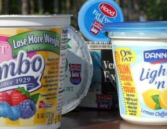 Picking the right yogurt for you