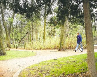 A man and his dog take a stroll in the rain through the Leo Mol sculpture garden Monday morning.