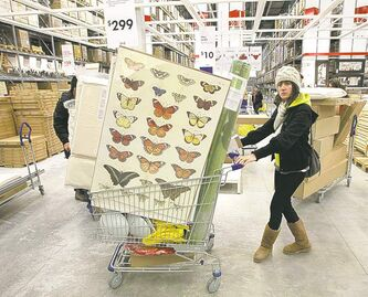 IKEA shopper takes home a cart full of loot.  Kristy Lanauze of Sioux Lookout, Ont., loads up at IKEA�s grand opening last month.