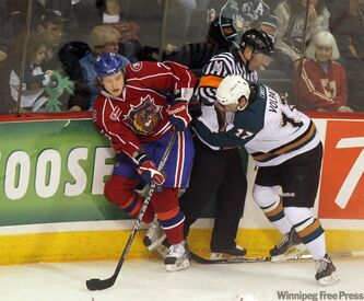 Moose Aaron Volpatti and Bulldog Ryan White tangle around the referee.
