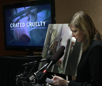 Twyla Francois, the director of Investigators for Mercy for Animals Canada, says the hog industry in Canada needs to update the way it runs hog farms.