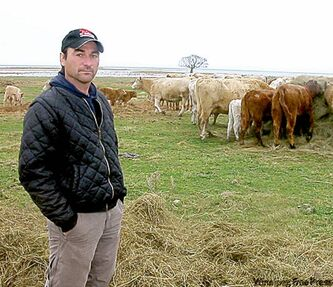 Lake Manitoba rancher Joel Delaurier will start moving over 600 head of cattle Saturday.
