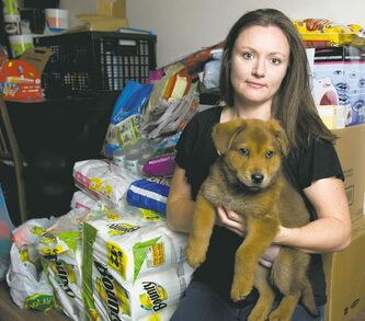 Hull�s Haven Border Collie Rescue volunteer Jill Britton, shown with Chubbs, says 44 boxes of dog food and supplies were stolen from behind her Windsor Park home Tuesday evening. The boxes included canned food, blankets and cleaning supplies that were to be delivered to the Norway House Animal Rescue Network.
