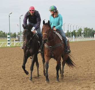 2013 Horse of the Year Zdeno with Jim Meyaard aboard led by wife Amber Meyaard on pony.