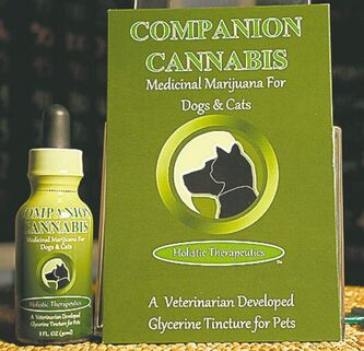 DAMIAN DOVARGANES / THE ASSOCIATED PRESS