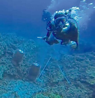 A scuba diver swims towards activist Rene Umberger before ripping out her air-supply regulator.