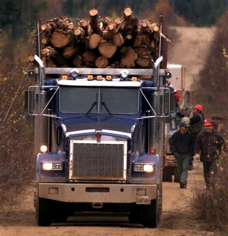 A truck loaded with logs heads down a logging road near Minto, N.B., on Monday Oct. 25, 1999. Far from the loud Parliament Hill battle between Conservatives and environmentalists, a group of forest industry executives and conservationists are quietly forging agreements that will permit an increase in logging while also protecting endangered caribou and fragile ecosystems. THE CANADIAN PRESS/Andrew Vaughan