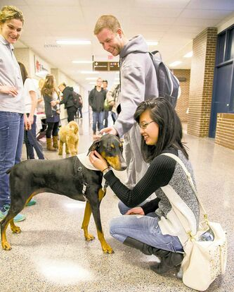 Red River College students make some new friends at the Mind It! pet-therapy event.