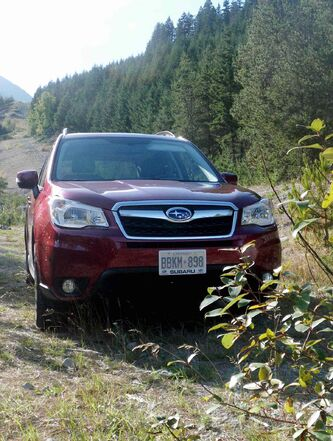 With its CVT and all-wheel drive, the Subaru Forester is up to the demands of moderate back-country driving.