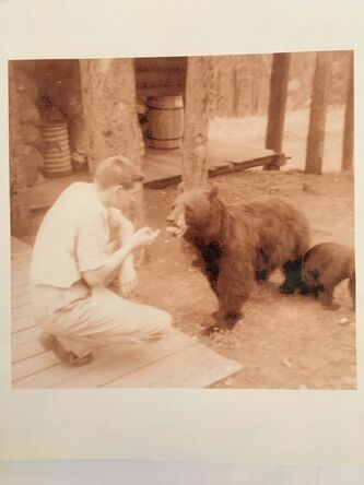 <p>Supplied</p><p>Feeding the mother bear with her cubs in Banff, circa 1958.</p>