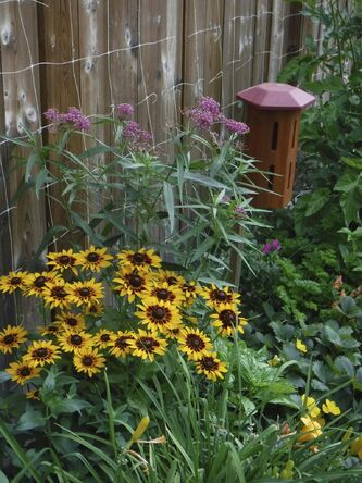 <p>C. Schroeder</p><p>Creature comforts: a butterfly house adjacent to a nutritious food source.</p>