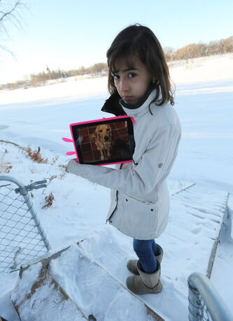 Carolina Amador, 11, shows off a photo of her dog, Talia on Sun., Dec. 29, 2013. Talia, a 16-month-old female cocker spaniel cross, ran away from the family's Glenwood Drive yard and onto the Red River just a day after moving to Winnipeg from Colombia.