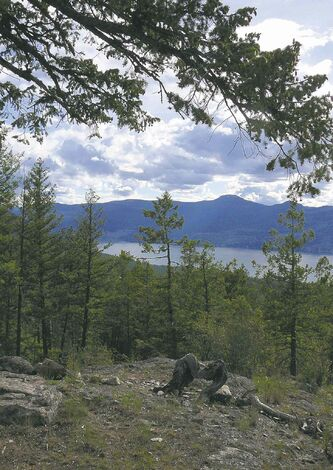 Lisa Monforton / POSTMEDIA NEWS INC. 
