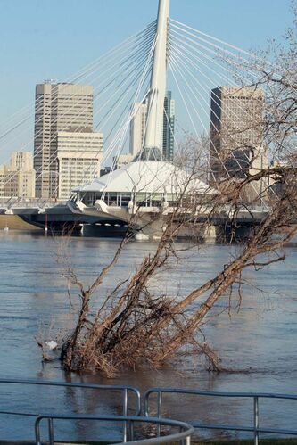 High water levels on the Red River in downtown Winnipeg in May 2009.  Flood forecasters are calling for spring flooding on the Red  River Valley on par with 2009 levels.
