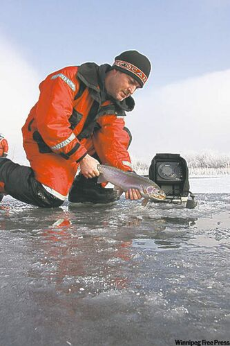 Steven Wintemute releasing his first ice rainbow trout caught last season in Patterson Lake.