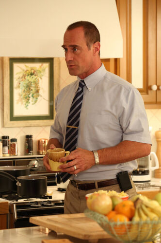 Christopher Meloni stars as Jack in Surviving Jack.