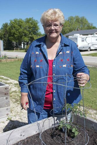 Millennium Gardens secretary Aggie Harder is shown at her plot. She is disappointed by recent vandalism at the site.