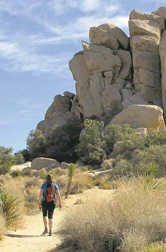 Imagine a life with no tablet, computer, smartphone!  Hiking in Joshua Tree National Park, near Palm Springs, Calif., is great for digital detox.