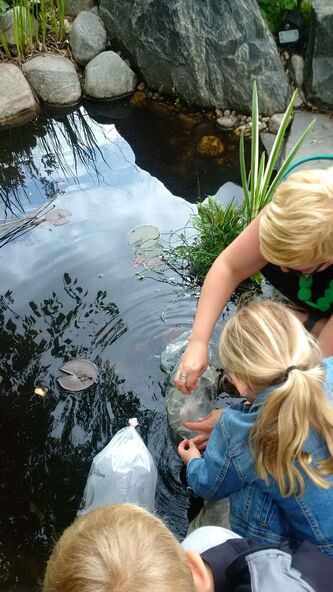 <p>JANICE BIEBRICH</p><p>Teach your children well. Gardens can be important learning environments for children by fostering their curiosity about nature.</p>