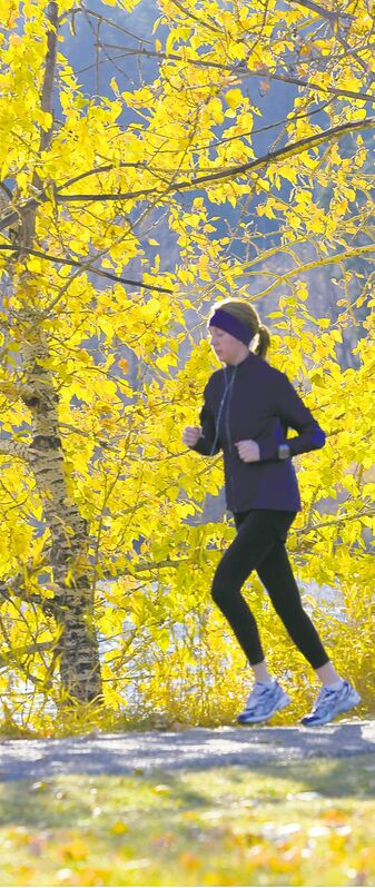 Sunlight backlights fall colours of poplar trees as runner passes.