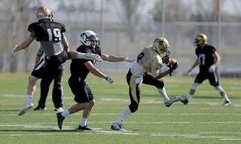 Receiver Shai Ross latches onto a pass during Bisons spring camp Sunday. Ross, a virtual unknown to the University of Manitoba coaching staff before camp began, has made a big first impression.