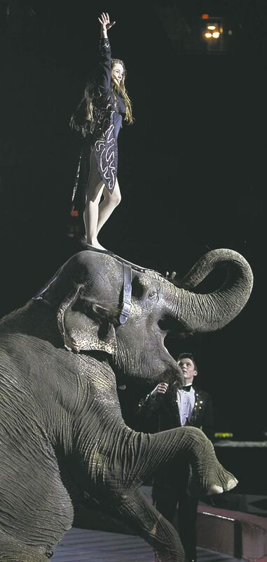WAYNE GLOWACKI/WINNIPEG FREE PRESS archiveExotic animal-bearing circuses conceal more sinister lessons. They appear to be our species� rituals of humiliation.