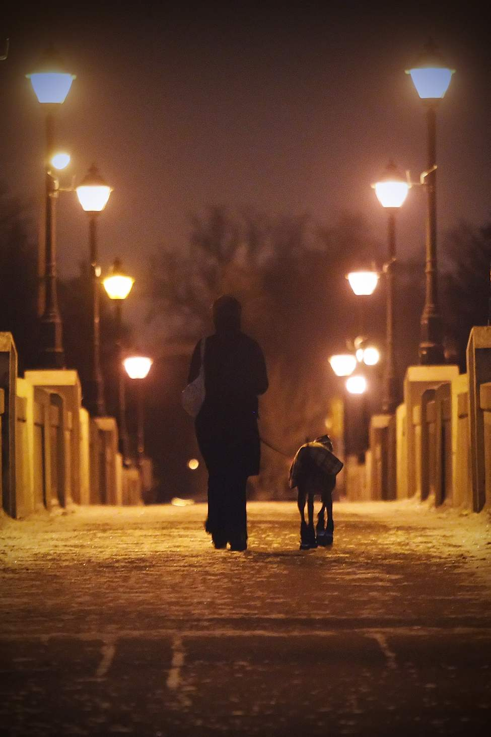 A woman walks her dog across the foot bridge in Assiniboine Park. December 12, 2011