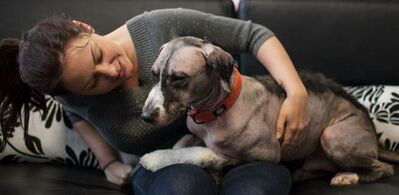 Harry the hairless dog has found a home at The Pawsh Dog salon, with owner Laurel Skuba. Harry, a border collie and Xolo cross, travelled up from Ohio through the Hull's Haven rescue network to land with Laurel.
