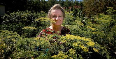 University of Winnipeg aquatic toxicologist and professor of biology Eva Pip is up to her ears in flowering dill plants at her home near Beausejour. The outspoken environmentalist is passionate about nature.