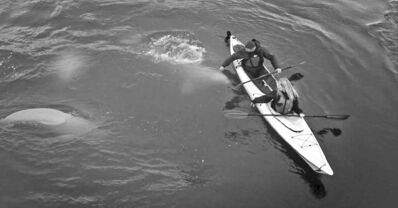 Kayakers and belugas appear in the new Manitoba tourism destination brand, Canada�s Heart Beats.