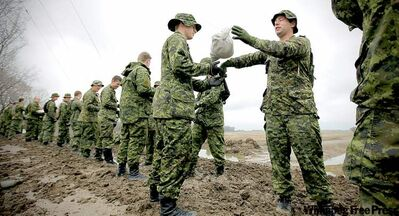 Soldiers from C Company, Second Battalion Princess Patricia's Canadian Light Infantry help with sandbagging just outside Poplar Point on Monday.