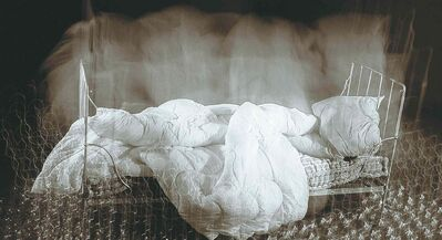Gabriela Morawetz's  J'ai reve que... (I have dreamed that...) from The Sleeping Self series, 2008-2009.