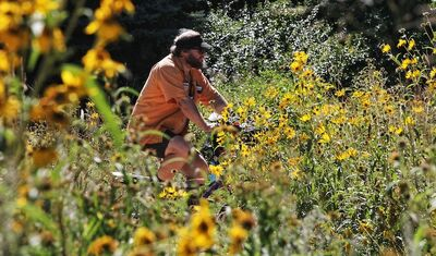 Paul Klimchak rides his bicycle through the butterfly garden at The Forks Monday afternoon.