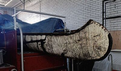 This five-metre birch bark canoe, similar to those used by the voyageurs who would traverse Canada's lakes and rivers to reach Winnipeg, was donated to the St. Vital Museum by Paul Desrosiers.