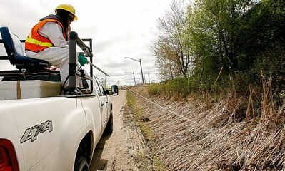 City worker operates sprayer used for controlling the mosquito population.