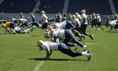 The Winnipeg Blue Bombers' were punished by having to do push-ups across the field after a couple of altercations during practice at Investors Group Field on Wednesday.