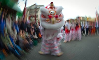 Captured using a slow shutter speed, a lion dancer performs during the 40th annual Chinese New Year Parade in Vancouver, B.C., on Sunday February 17, 2013. According to the Chinese zodiac 2013 is the year of the snake. THE CANADIAN PRESS/Darryl Dyck