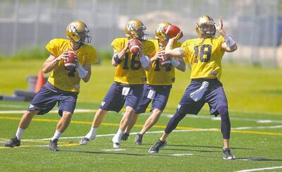 Max Hall (16), Justin Goltz (18) and Chase Clements (14) are battling to see who will be No. 2 and No. 3 behind starting quarterback Buck Pierce (4).