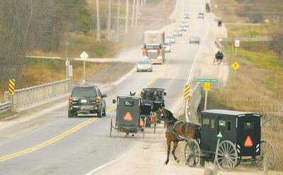 Waterloo Region's highways have long been an area where the horse-powered culture of the Mennonites collides with the outside world.