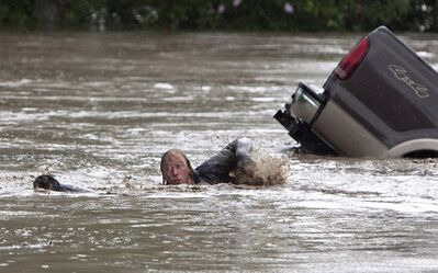 Kevan Yeats swims after his cat Momo to safety in High River. on June 20, 2013. THE CANADIAN PRESS/Jordan Verlage