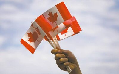 A volunteer waves Canadian flags while handing them out to people during Canada Day festivities in Vancouver, B.C., on Monday, July 1, 2013. THE CANADIAN PRESS/Darryl Dyck