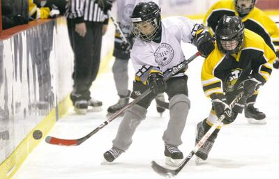 Mike Deal / Winnipeg Free PressEinav Shvartz (21) of the Macabi Young Metula team tries to control the puck while a member of the Corydon Comets tries to check him Sunday morning.