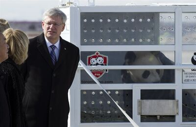 Prime Minister Stephen Harper chats with dignitaries at Pearson Airport in Toronto on Monday March 25, 2015 as he welcomes Da Mao, one of two Giant Pandas on loan to Canada from China. THE CANADIAN PRESS/Frank Gunn