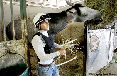 El Grayling digs into dinner in his stable at Assiniboia Downs while jockey David Lopez stands by with dessert in hand.